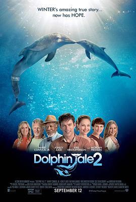 海豚的故事2
