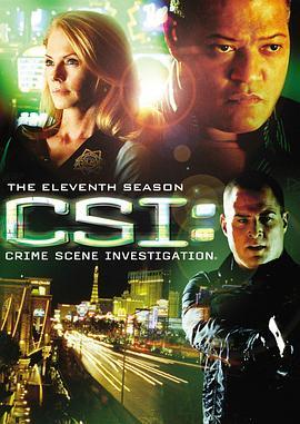 犯罪现场调查 第十一季