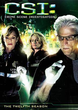 犯罪现场调查 第十二季