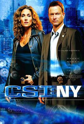 犯罪现场调查:纽约 第四季