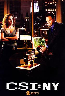犯罪现场调查:纽约 第五季